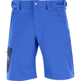 Salomon Wayfarer Spodnie krótkie Mężczyźni niebieski